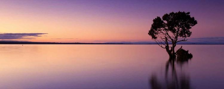Sunset Purples Staklena slika