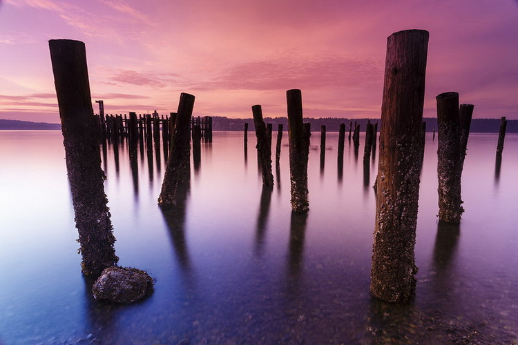 Wooden Landing Jetty - Colored Jetty Staklena slika