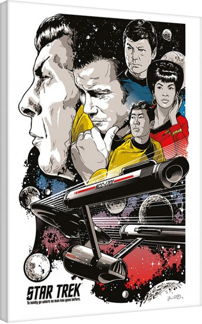 Plagát Canvas Star Trek: Boldly Go - 50th Anniversary