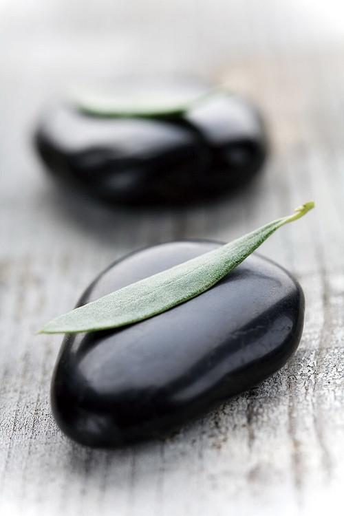 Szklany obraz Zen - on Wood