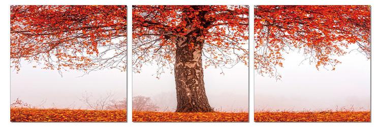 Alone tree in autumn Tableau Multi-Toiles