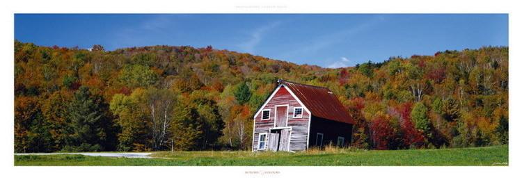 Autumn Colours Reproduction d'art