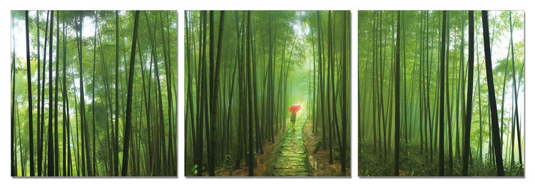 Bamboo Forest Tableau Multi-Toiles