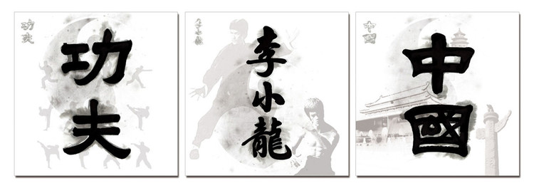 China Signs - Kung Fu. Bruce Lee, China Tableau Multi-Toiles