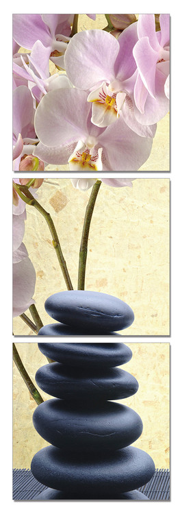 Feng shui - the stones Tableau Multi-Toiles