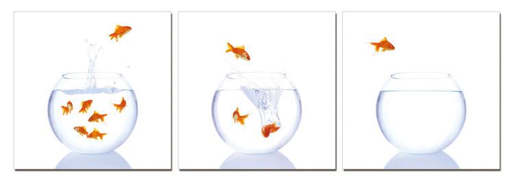 Goldfish in an aquarium Tableau Multi-Toiles
