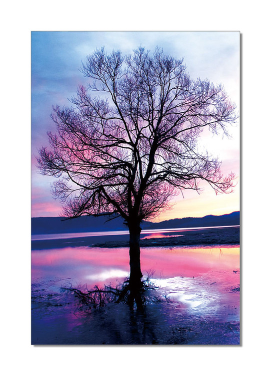 Pink Tree Tableau Multi-Toiles