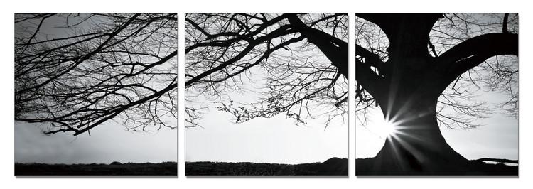 Tree - Silhouette (B&W) Tableau Multi-Toiles