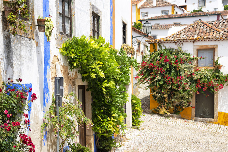 Old Town of Obidos Tablou Canvas