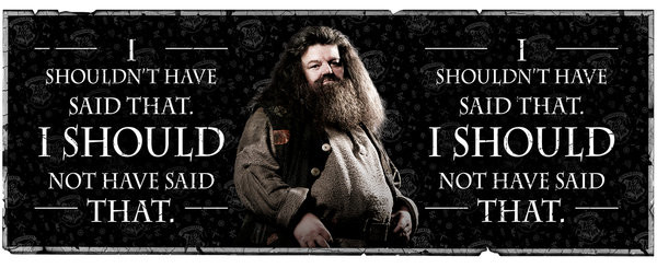 3adf1ba9024 Tasse Harry Potter - Hagrid Quote bei EuroPosters