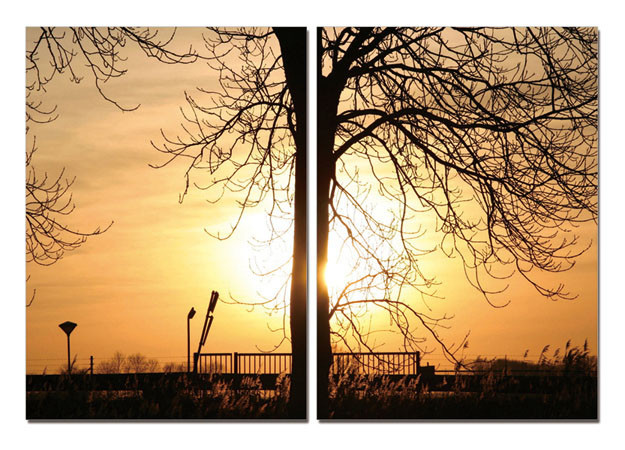 Mодерна картина Tree of Sun