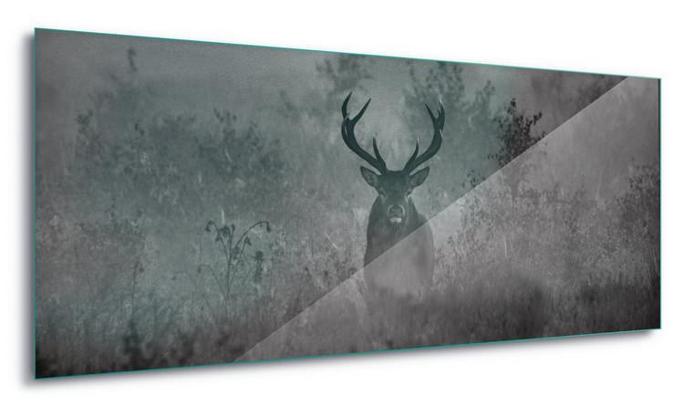 Üvegkép  Stag In The Mist
