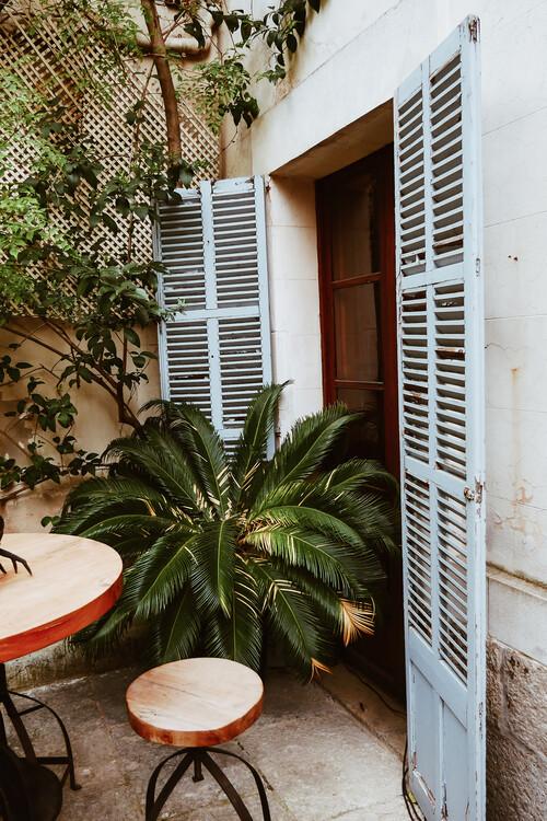 Umjetnička fotografija Backyard doors
