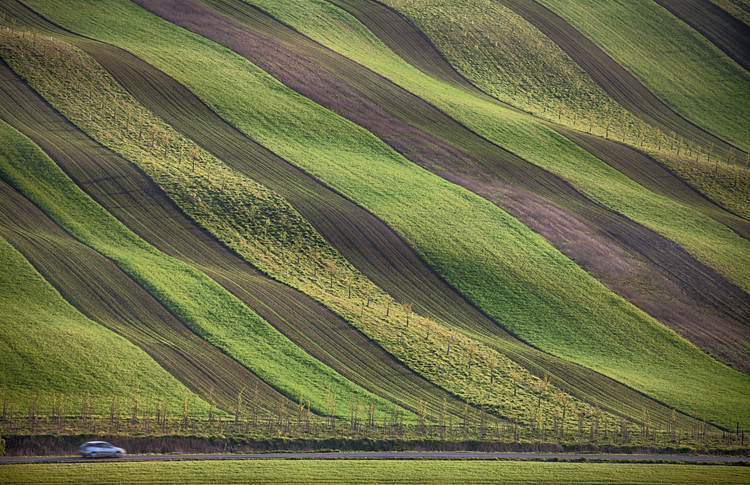 Umjetnička fotografija Stripes in the fields