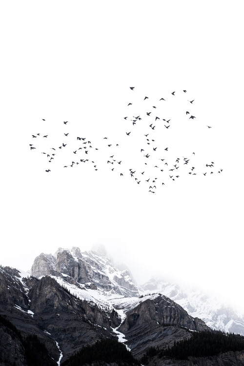 Umjetnička fotografija The Mountains