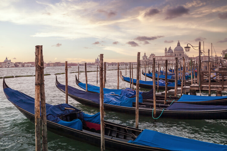 Umjetnička fotografija VENICE Gondolas & Santa Maria della Salute