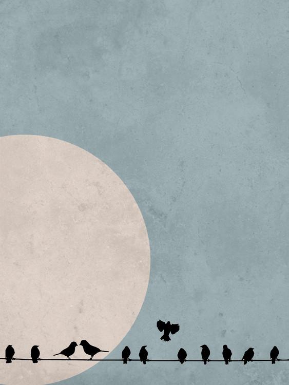 Umjetnička fotografija moonbird4