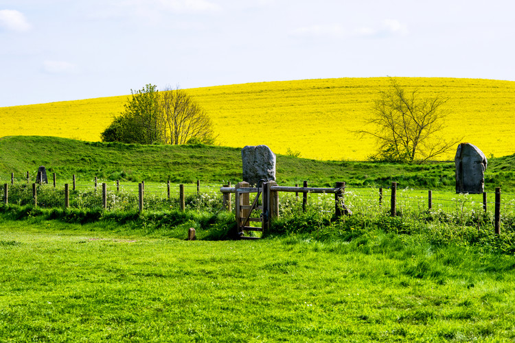 Umjetnička fotografija Natural Meadow Landscape and Abstract of Stones - Pewsey