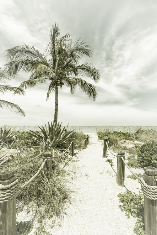 Umjetnička fotografija Path to the beach   Vintage