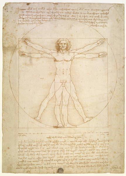 The Proportions of the human figure (after Vitruvius), c.1492 Reprodukcija umjetnosti