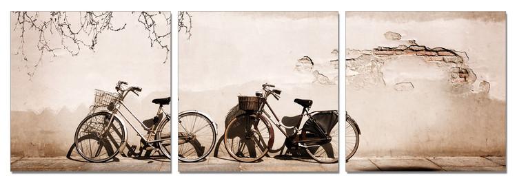 Wandbilder Old Bicycles