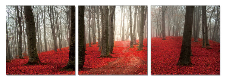 Wandbilder Path on the Red Hill