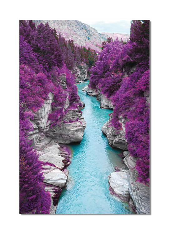 Wandbilder River flows in Purple Forest