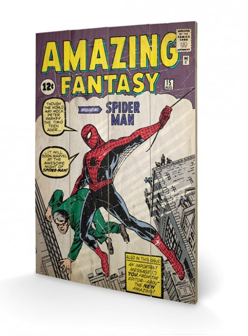 Obraz na dřevě - Spiderman - Amazing Fantasy