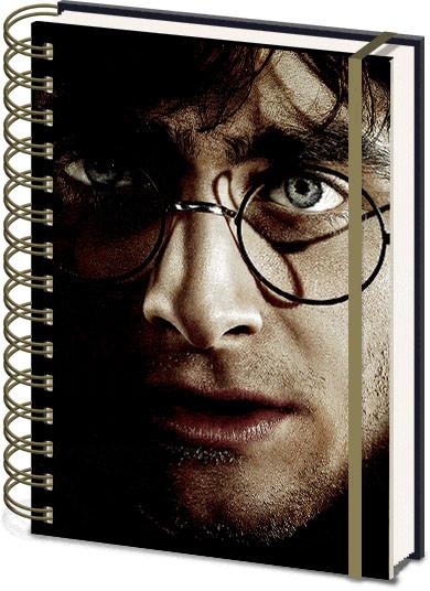 Harry Potter - Harry Voldemort 3D Cover Zápisník