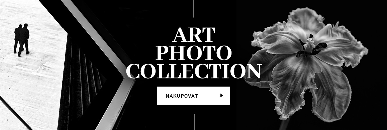 Art Photo Collection